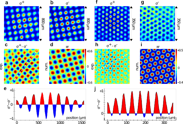 Magnetski uređena stanja. a)-e) antiferomagnetsko uređenje na kvadratičnoj rešetki za iskuljučeno magnetsko polje. f)-j) ferimagnetsko uređenje na heksagonalnoj rešetki za magnetsko polje od 120 mG. Prikazani su rezultati eksperimentalnih mjerenja te računalnih simulacija. Duljinsku skalu optičke rešetke moguće je mijenjati pomicanjem položaja zrcala.