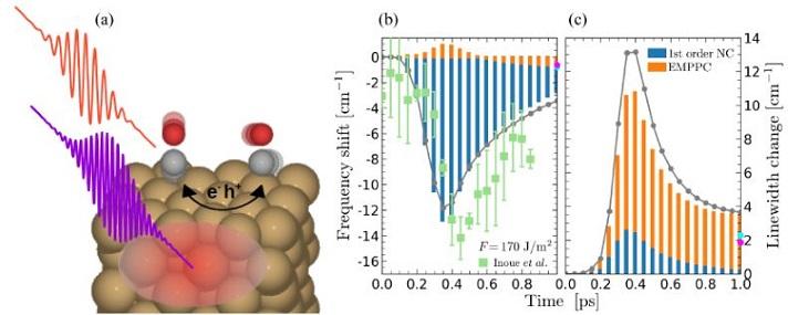 Slika 1: (a) Shematski prikaz mehanizama vezanja odgovornih za pomake unutarnje stretch frekvencije CO na Cu(100) inducirane femtosekundnim laserskim pulsevima. Analiza razdvojenih doprinosa (b) frekvencijskih pomaka i (c) promjene širine linije po absorpciji laserskog toka F= 170 J/m2. Plavo predstavlja doprinos člana neadiabatskog vezanja (NC) u prvom redu, a narančasto prikazuje doprinos elektronski posredovanog fonon-fonon vezanja (EMPPC), dok su sivi krugovi njihove sume. Svijetlo plave i ljubičaste točke pokazuju odgovarajuće rezultate za  t = 50, odnosno 100 ps. Zeleni kvadrati su eksperimentalno dobiveni pomaci frekvencija (iz K. -i. Inoue, et al., Phys. Rev. Lett. 117, 186101 (2016)). Simulirani rezultati pokazuju dobro slaganje s eksperimentalnim podatcima.