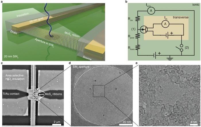 Slika: (a i b) Pregled koncepta uređaja za korelirano očitanje translokacije DNK kroz MoS2 nanoporu te (c-e) mikroskopijske slike uređaja u različitim povećanjima.